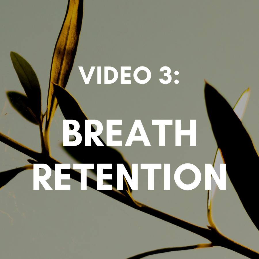 Video 3: 4-7-8 Breathing