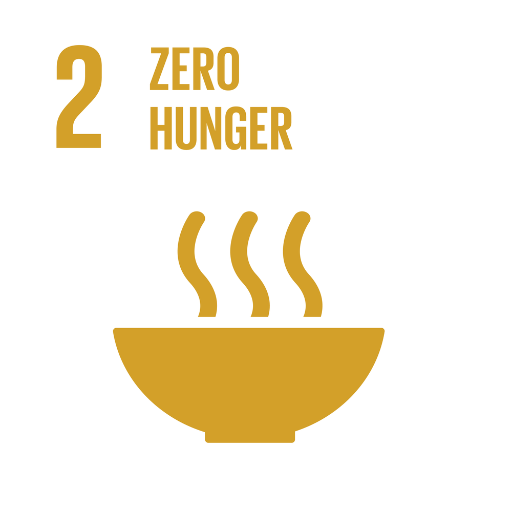 E_INVERTED SDG goals_icons-individual-RGB-02.png