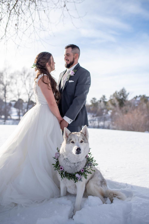 winter wedding gowns.jpg