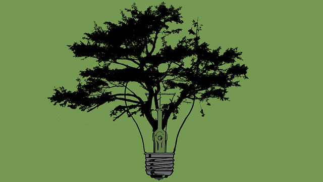 tree-2787760_640.png