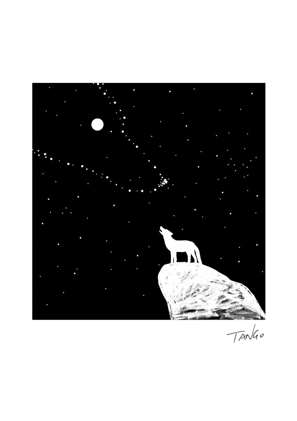 20121020 望月狼嗥是因为狼比我们看到更多的星星 拷贝.jpg