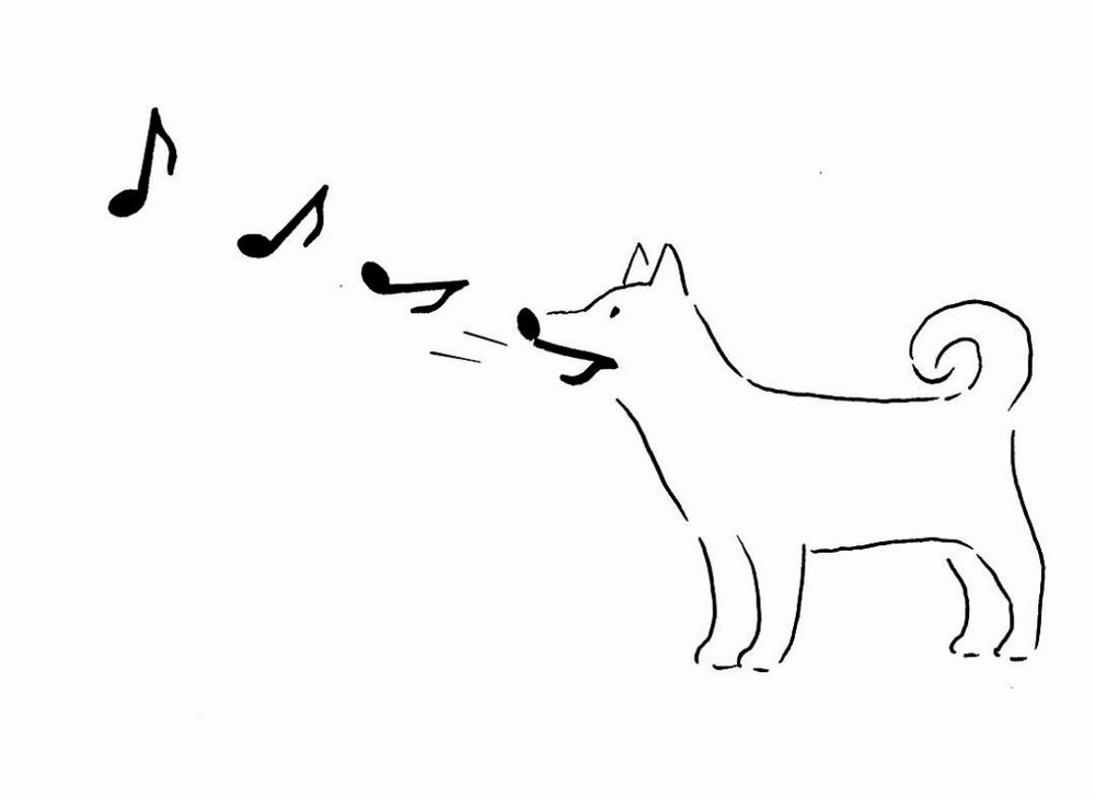 tangosleepless-dog-music.jpg