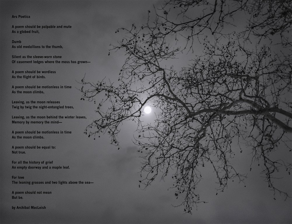 poetica2-10.jpg
