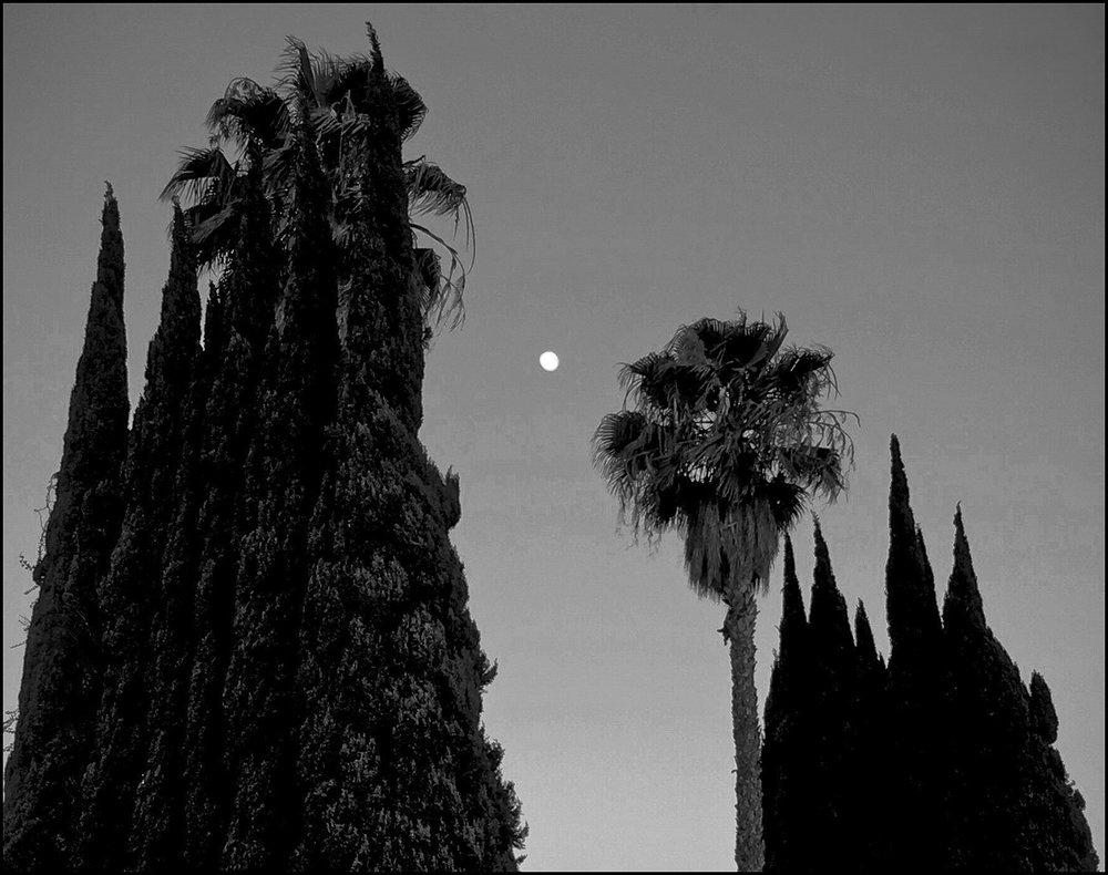 LA_moon_1a-205-138.jpg