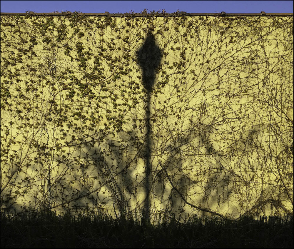 lampost_shadow_wall-sm.jpg