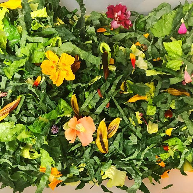 Rise and Shine!! The sun is peeking out and we are setting up our sweet little booth at the @bifarmersmarket.  Come see us from 9-1 today for your weekly dose of plant based goodness.  Pictured here... Lacinato kale from our own Shady Acres Farm, romaine lettuce from Red Dog Farm and the most lovely edible flowers from Persephone Farm. Makings for our personal favorite, the Kale Caesar! #supportlocal #organic #vibrantfood