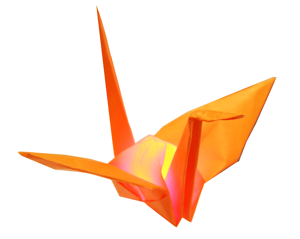 craneLED.jpg