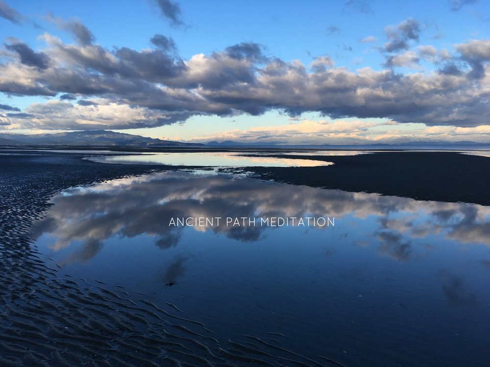 RATHTReVOR BEACH - LISA BURNESS PHOTOGRAPHY