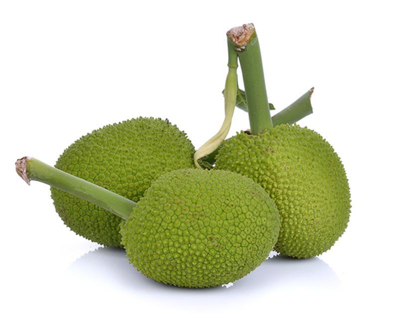 jackfruit_yaca_fruit_fruta_marvellous_2.jpg