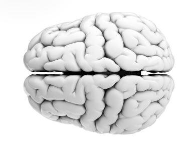 Brain Health is key to longevity