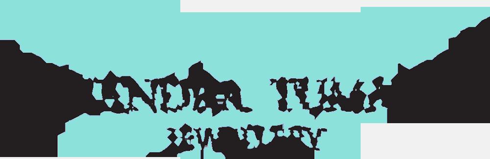 AlexLogo2017turquoise.png