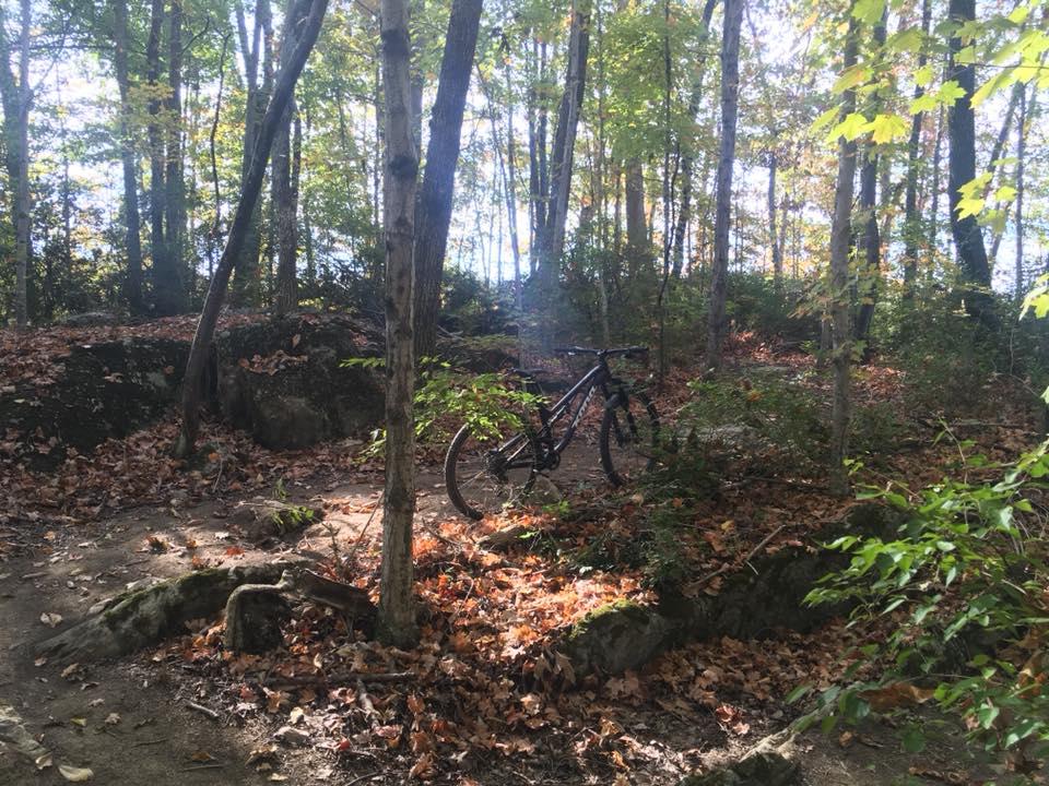WSCC trail.jpg