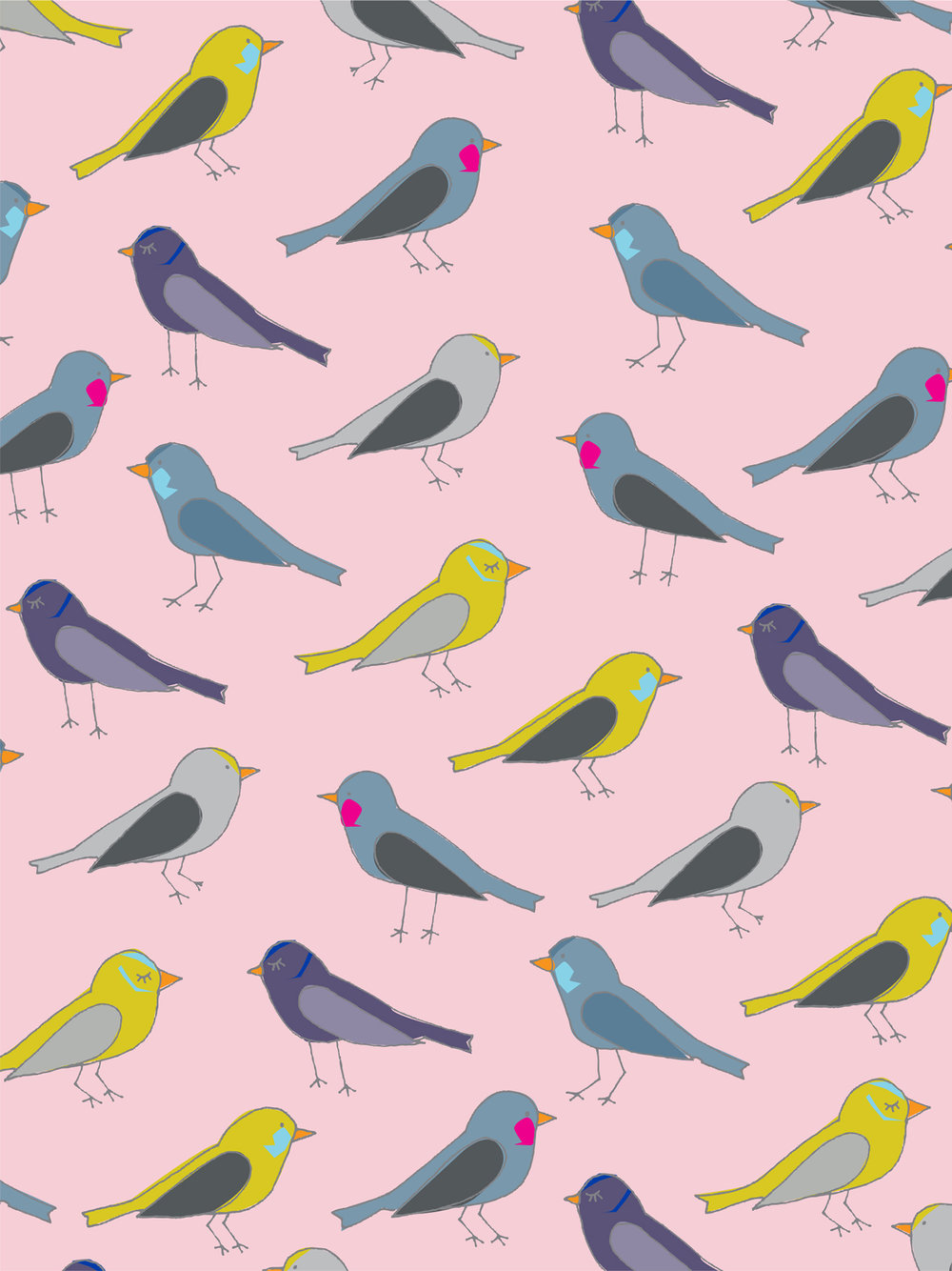 jami_darwin_flock_of_birds.jpg