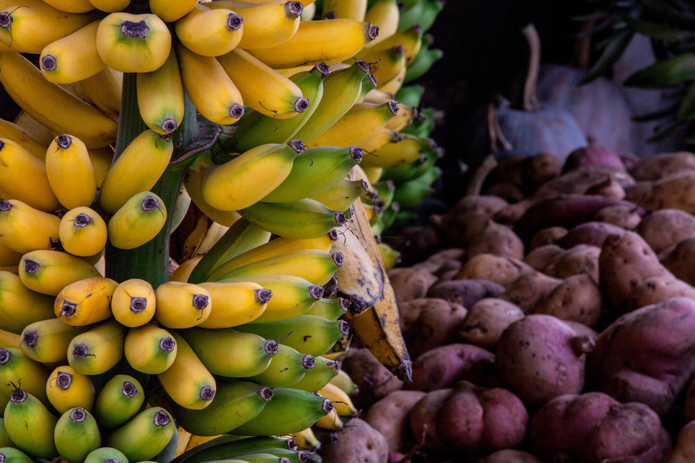 Bananas (1 of 1).jpg