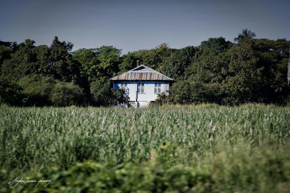 The House Jamaica (1 of 1) copy.jpg