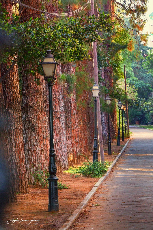 Marbella Park street (1 of 1) copy.jpg