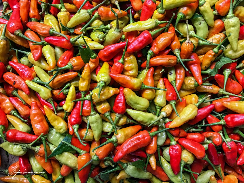 Chillies (1 of 1).jpg