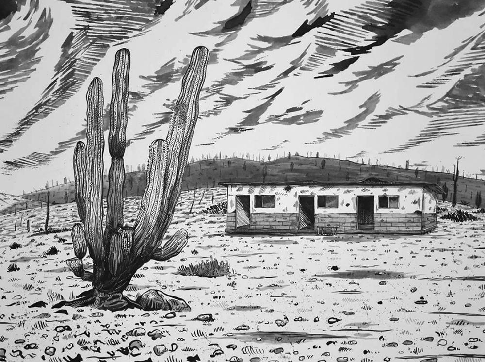 public_land_sacramento_Art_exhbition_cacti_.jpg