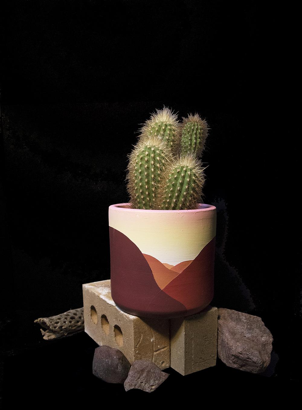 public_land_Store_sacramento_maxwell_mcmaster_planter_cactus_2.jpg