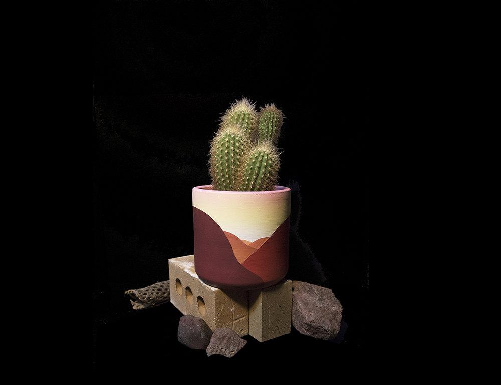 Custom cactus planter