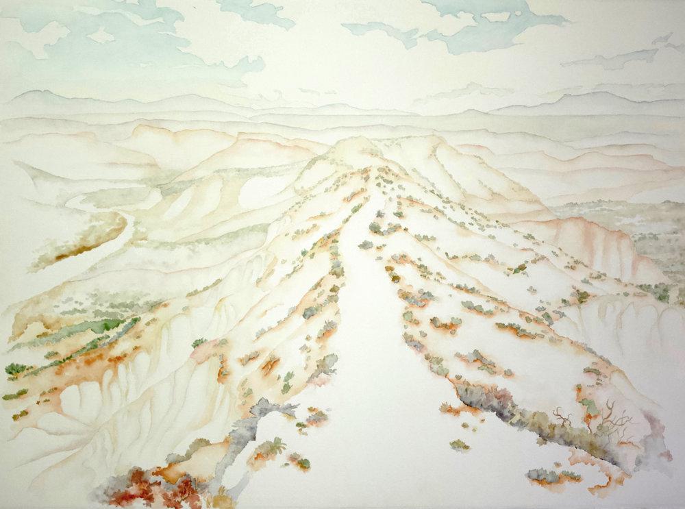 Charlotte Beavers art exhibition at Public Land Store Sacramento.