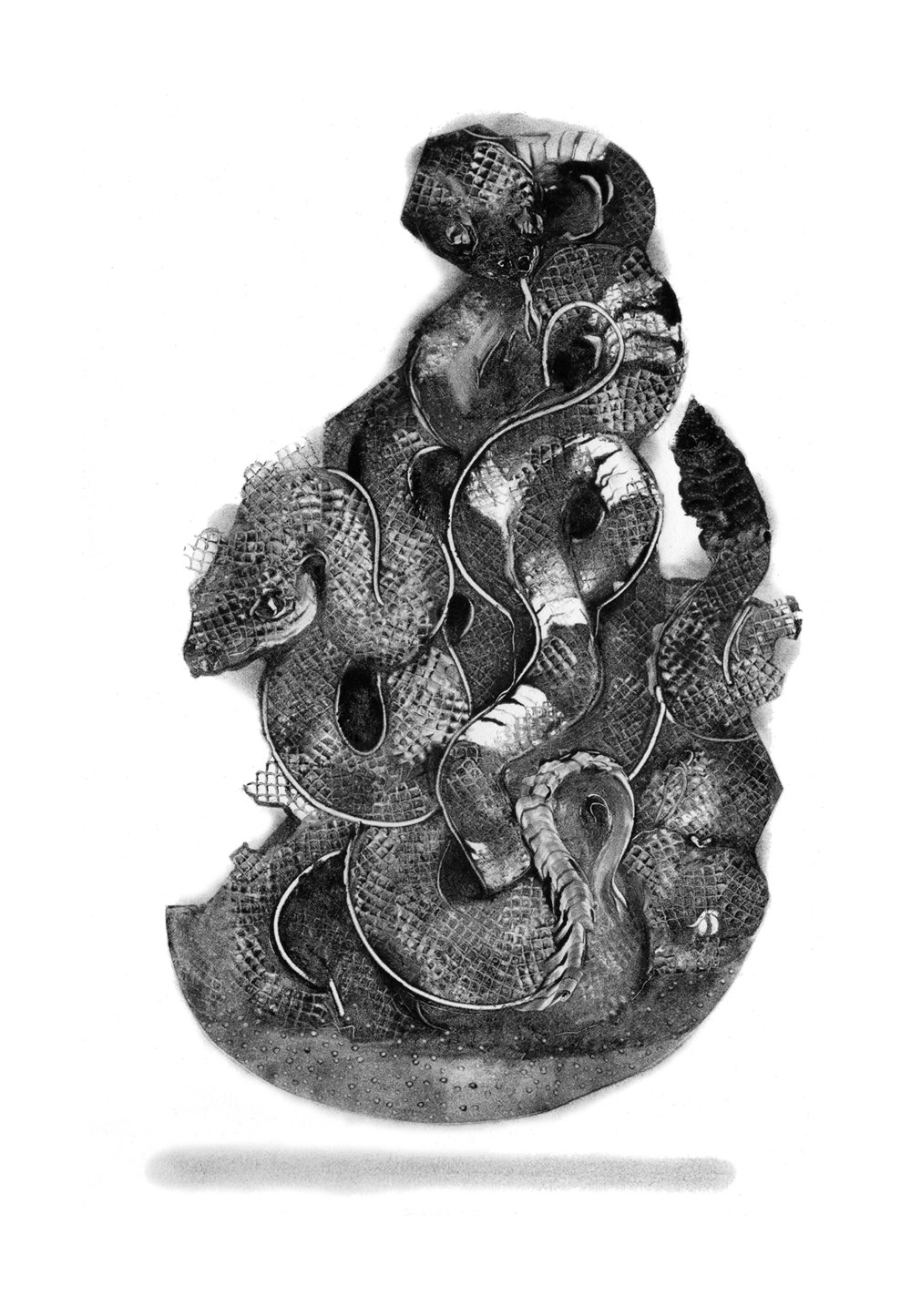 snake collage by Grady Gordon at Public Land in Sacramento