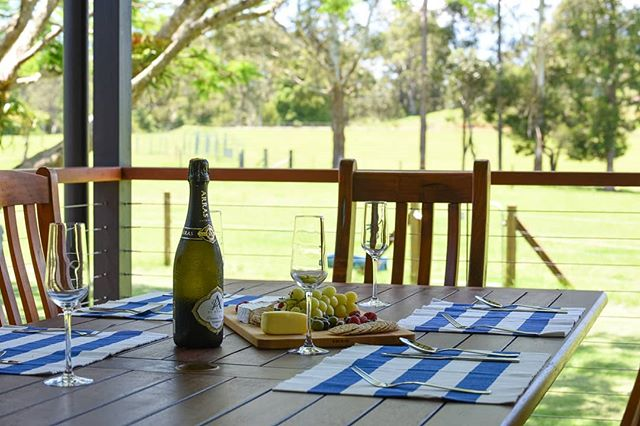 How about afternoon refreshments watching the miniature cattle graze through the avocado trees. #sunshinecoast #airbnb #lifestyle #sunshinecoasthinterland #getaway #countrylife #visitsunshinecoast