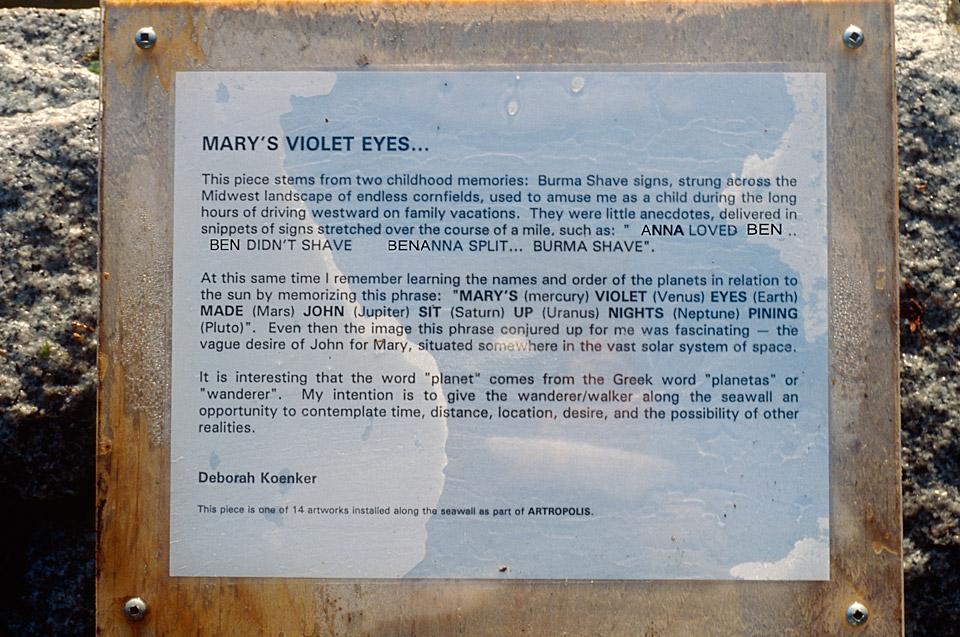 Deborah-Koenker-Visual-Artist-Vancouver_Marys-Violet-Eyes