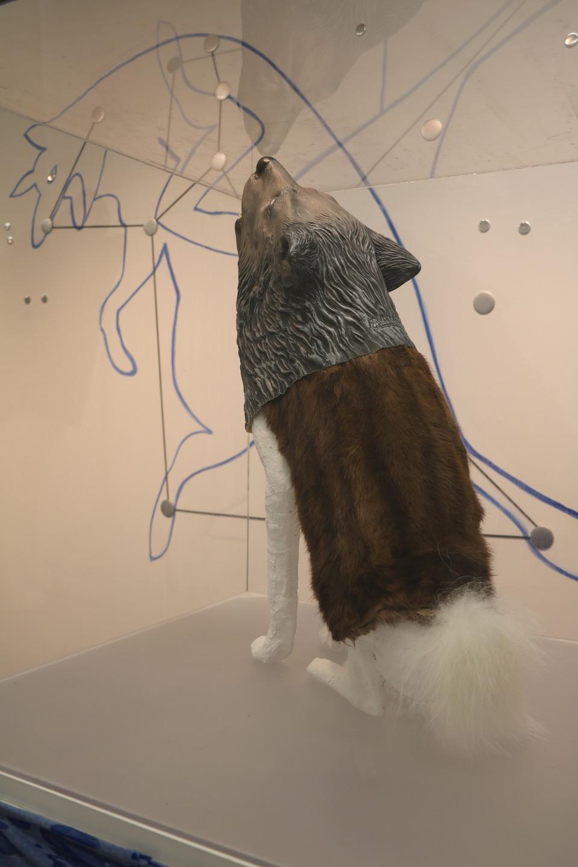 Deborah-Koenker-Visual-Artist-Vancouver_Northern-Howl
