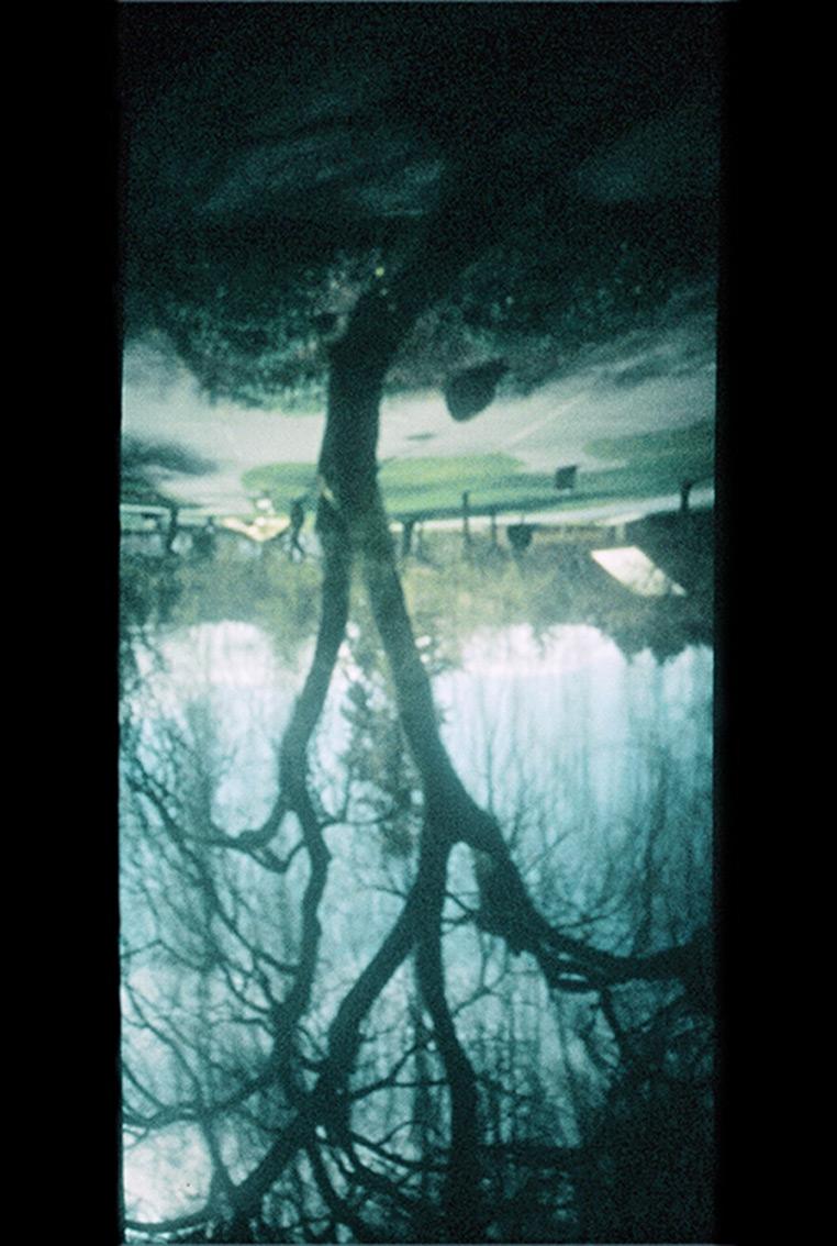 Deborah Koenker | Visual Artist | Vancouver | Scar