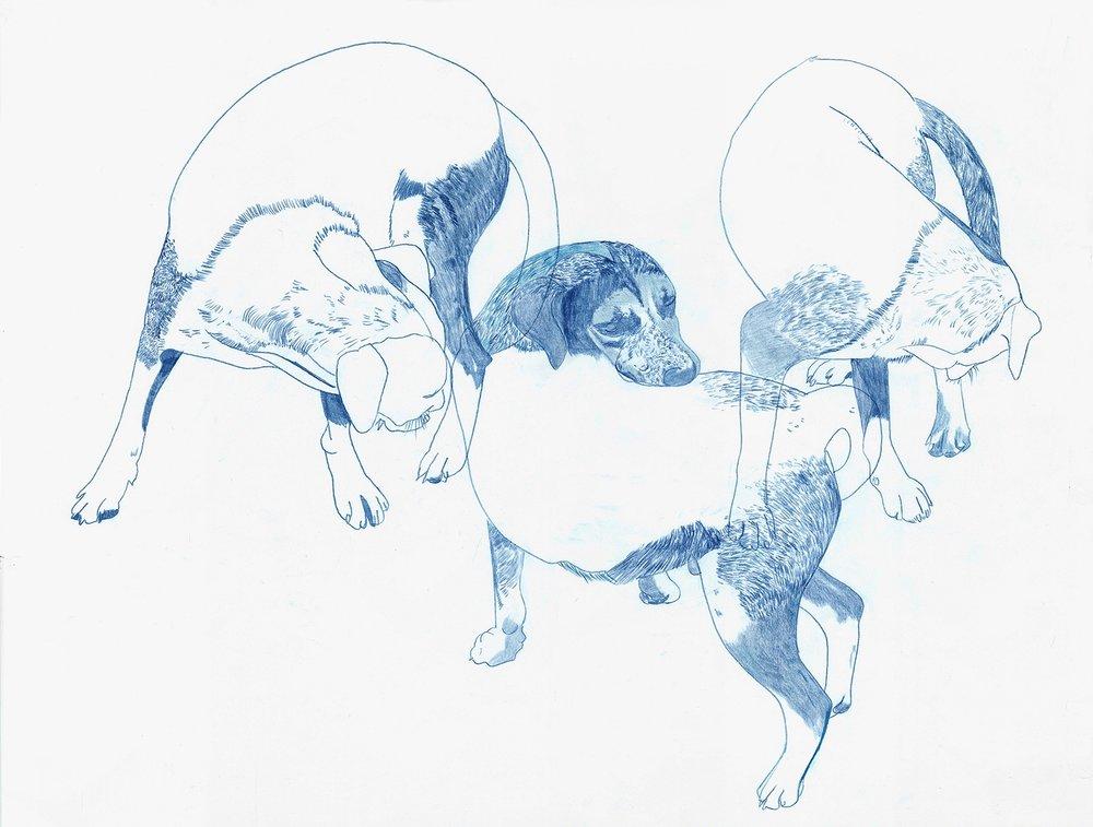 Deborah-Koenker-Visual-Artist-Vancouver_Draw-the-world-Mexico