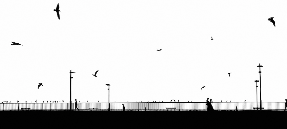 ACT2016-TunneyK-1.jpg