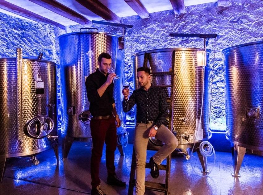 Pitznerhof - Wein als Kunstwerk - Die jungen Brüder Markus und Thomas haben vor nicht all zu langer Zeit den Familienbetrieb übernommen und lassen mit einzigartigen Cuvées viele erstaunen. Ihre Weine bestechen durch ihre Finesse und Jugend, welche das trinken zum Spass macht.