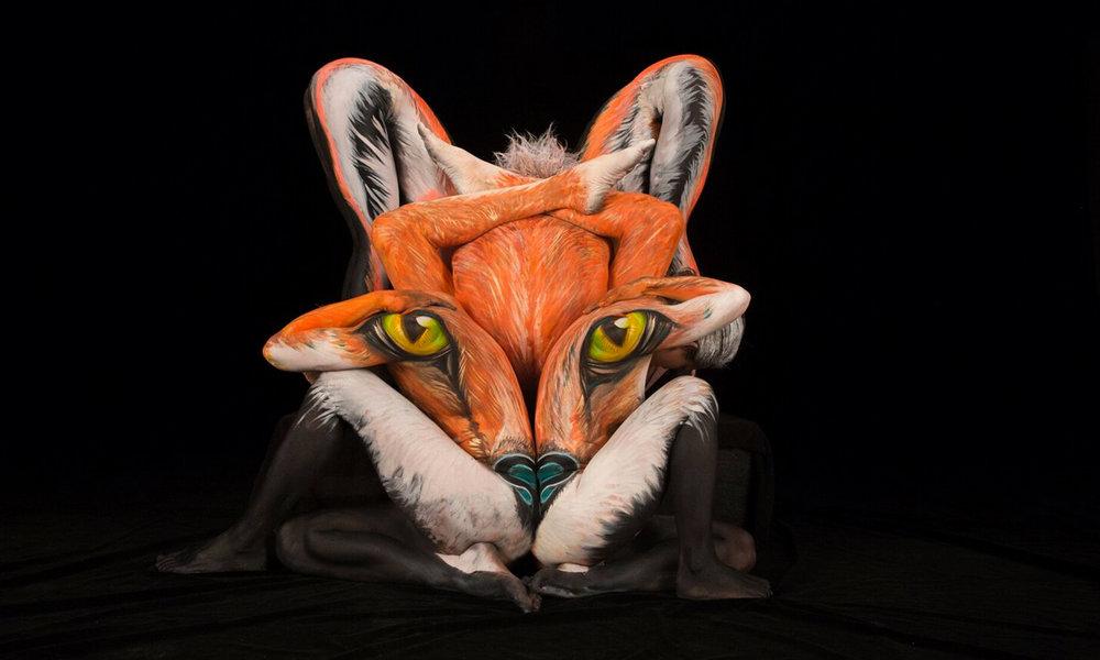 new fox.jpg