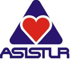 Assistur.png