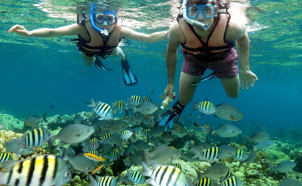 Snorkeling in Cuba.jpg