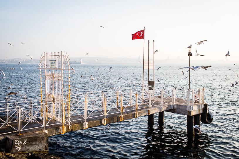 20140112-_Z0A8235-Istanbul.jpg