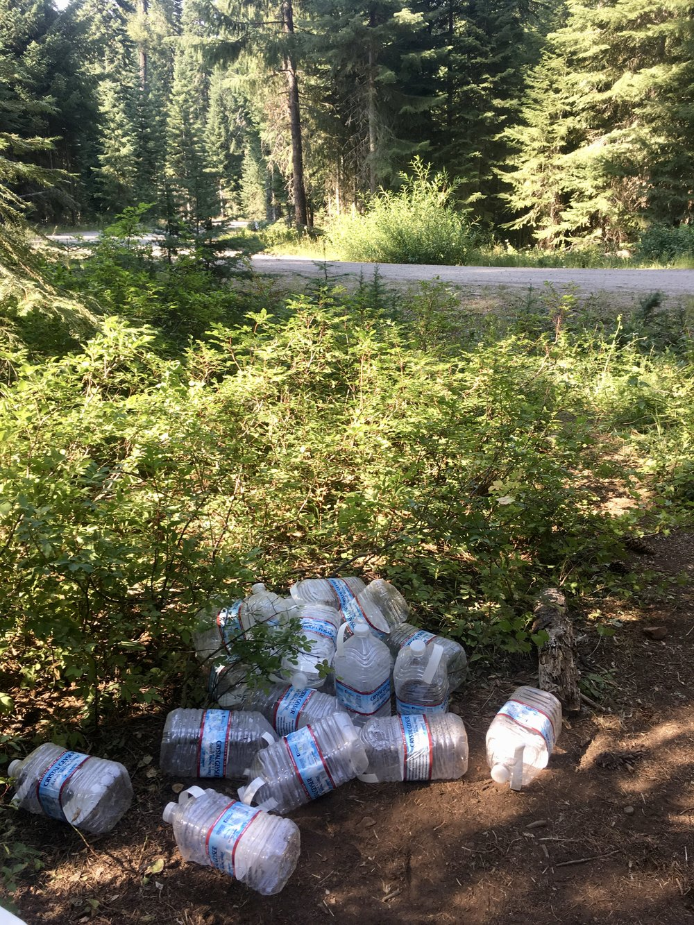 Despite what we heard from others, this water cache in Oregon turned up empty. For the next ten miles of exposed lava fields, I had only a 0.5 liter of water and learned a very valuable lesson that day.