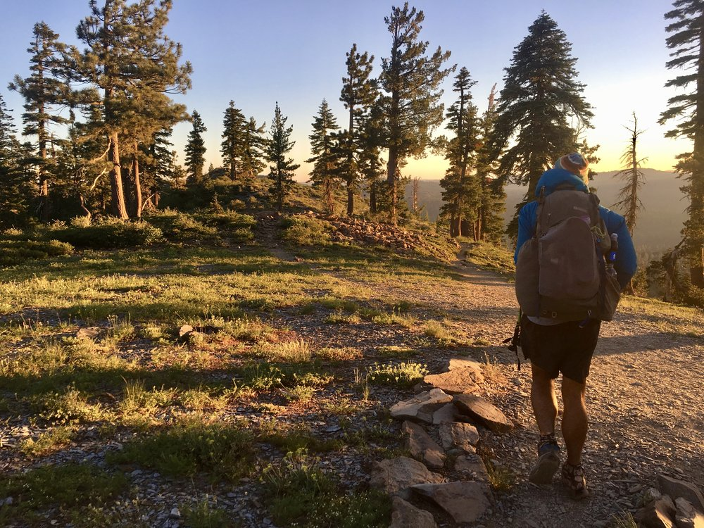 Blis hiking at sunrise somewhere after Sierra City, CA