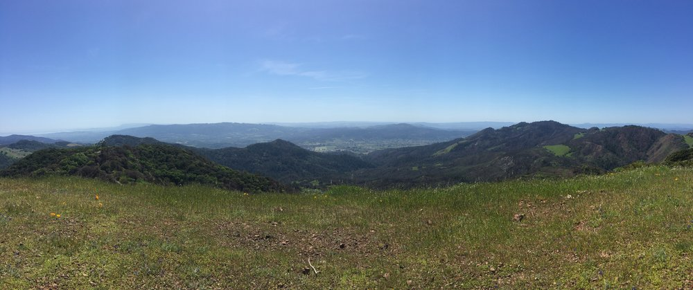 View from the top of Bald Mountain