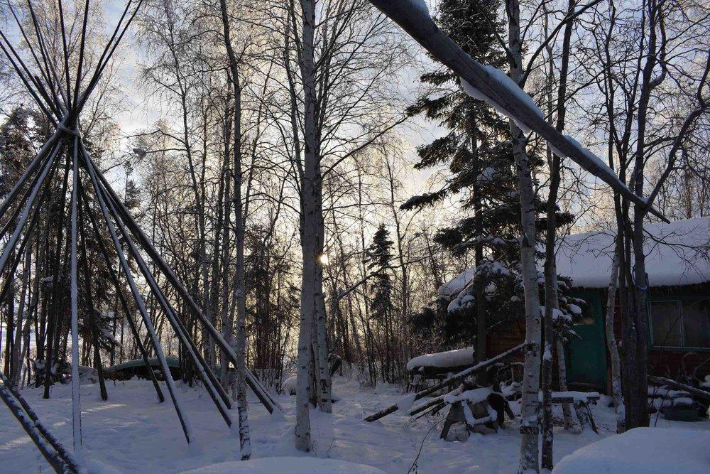 tipi poles cabin_web.jpg