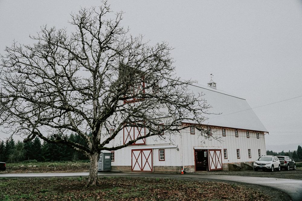 Portland Oregon Tree Farm Wedding Photography 2