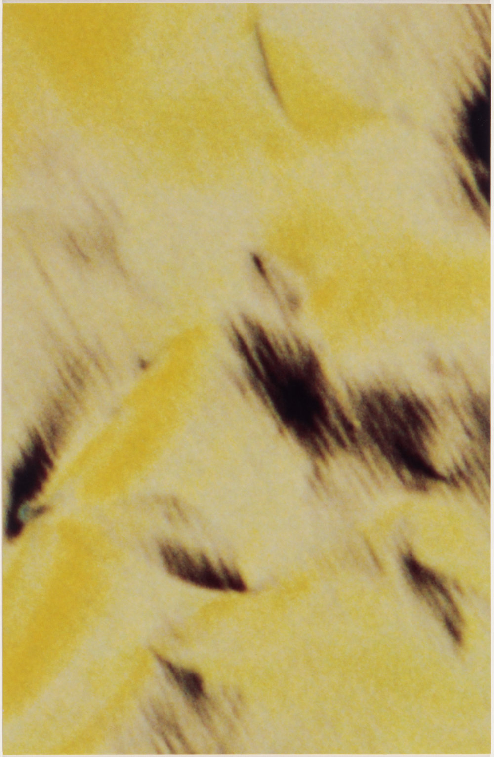 Carol Szymanski, %22Cavatina 1c: Weapons on Hand,%22 2017, 4.3 x 2.8 inches, Cibachrome unique print.jpg