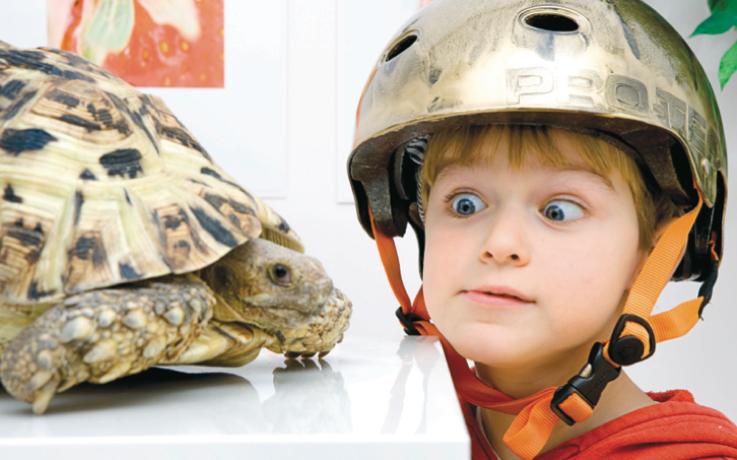 Zoo Zity Nordic Venture Partner