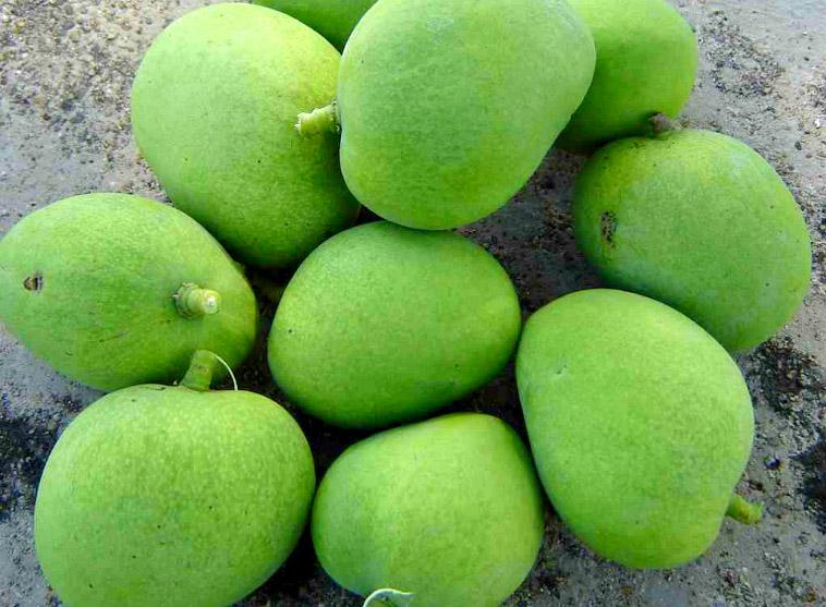 Green-mango-salad-1.jpg