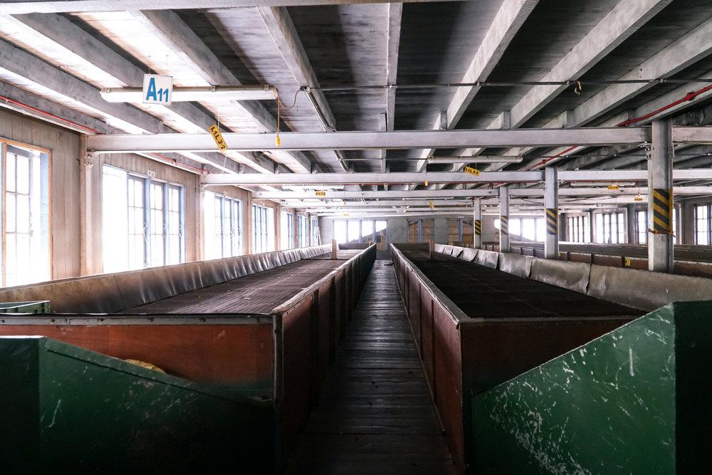 Ensimmäisen vaiheen kuivatuslaarit vetävät noin 1000kg teelehtiä ja haihduttavat n. 70 % niiden kosteudesta. Kuivaus kestää 12-18h.
