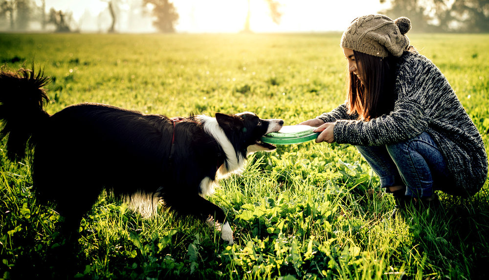 Relax with (furry)friends. - Speaking of friends, we've got your furry pals covered too. Our dog park offers plenty of room to run, and clean up is easy and convenient at our dog wash station.