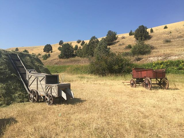 Jim Zimpel's sculptures and borrowed wagon! #contemporaryart #sculpture #gabrielcanal #waterworks #mountaintimearts #harvest @jimzimpel @maryellenstrom