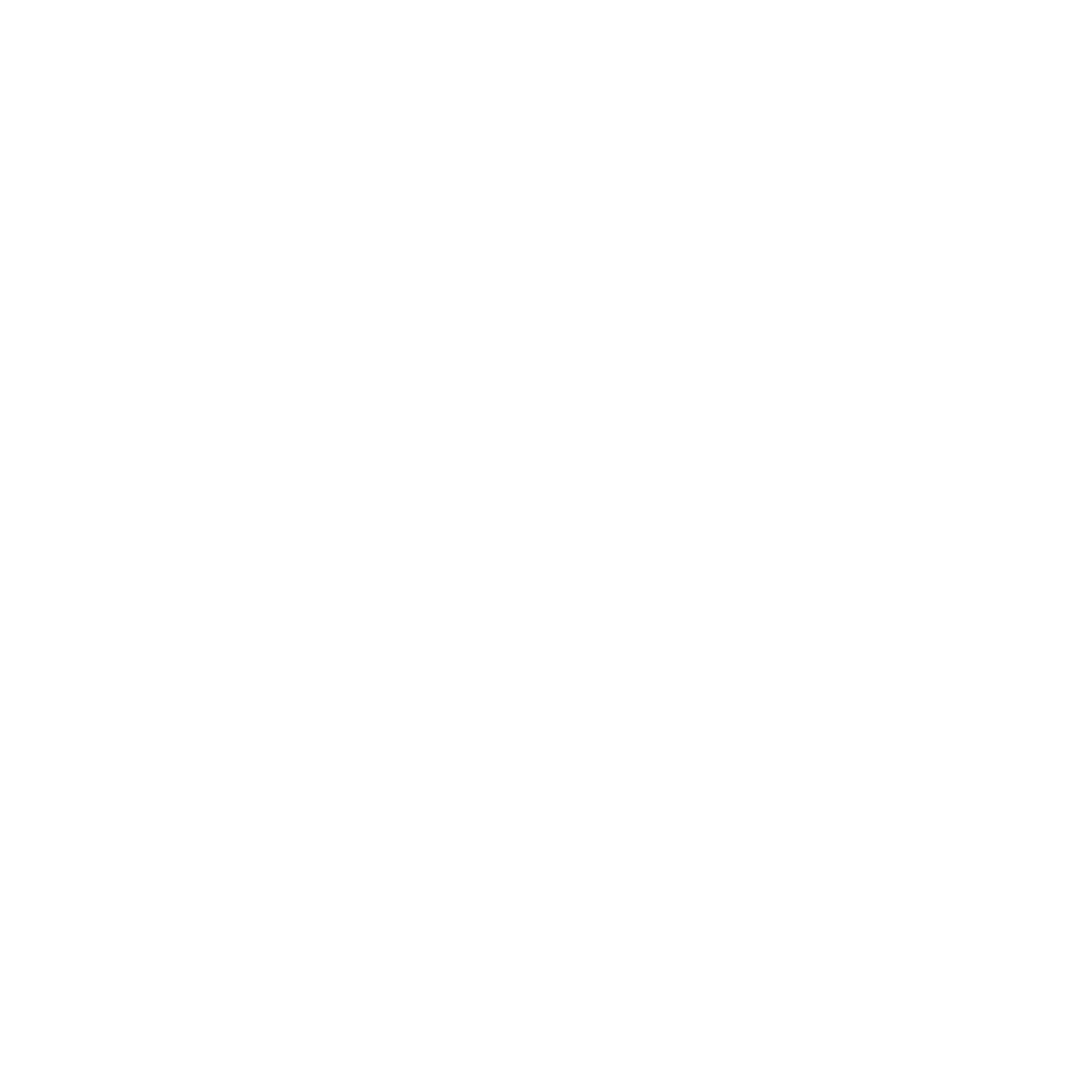 Chicago Arts and Music Project