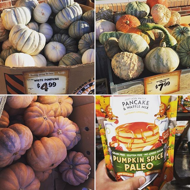 🎃🍁The pumpkin game was strong yesterday in Tulsa. Sprouts has quite the selection right now. All I want to do is eat paleo pumpkin pancakes while sitting on a porch decorated with these magic pumpkins. Thankful I live in a place where I can actually do that! Wanna pumpkin-ify your CL porch? Shoot me a message and I'll grab some for you next week! Don't forget the pancakes 🥞🎃😋. • • •  #pumpkineverything #fall #groceryshopping #grocerydelivery #sproutsfarmersmarket #carltonlanding